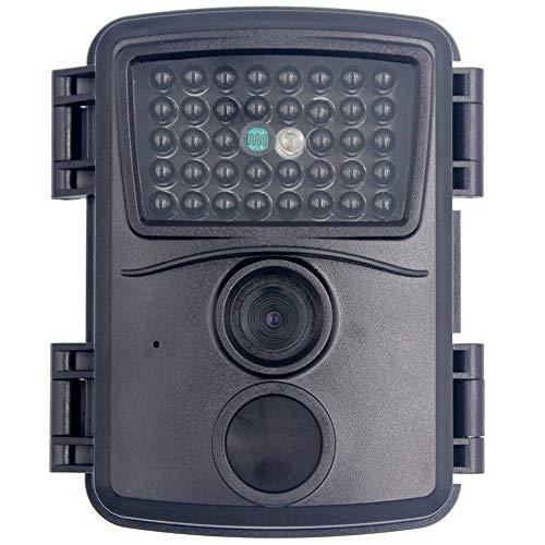 MZBZYU Camara Vigilancia Sensor Movimiento Equipado con Tarjeta TF de 32G IP66 Impermeable Gran Angular de 120° para Rastrear Hábitos de Actividad de los Animales