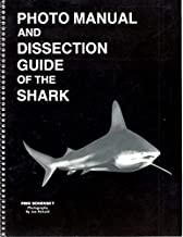 Photomanual and Dissection Guide/Shark