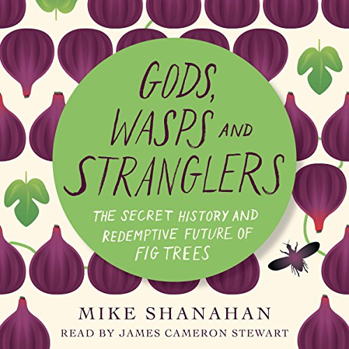 Gods, Wasps and Stranglers audiobook cover art