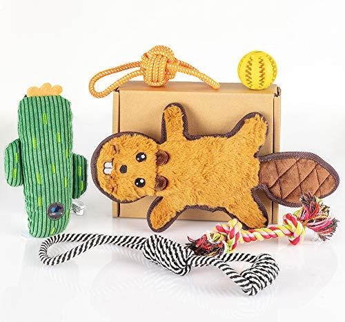 Fluffy Care Hundespielzeug Welpe Spielseil Kauspielzeug Hund Kuscheltier Quitschend hundespielzeug Set hundezubehör für Welpen, Kleine und Mittel Hunde 6 PCS