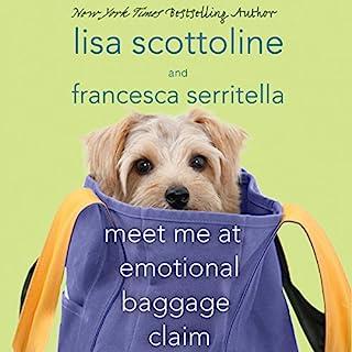 Meet Me at Emotional Baggage Claim audiobook cover art