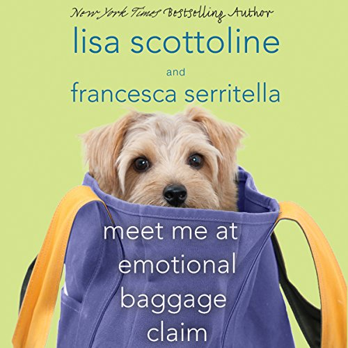 Meet Me at Emotional Baggage Claim audiobook cover art