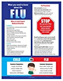 Flu Poster - What You Need to Know About the Flu Poster - Flu vs Cold Poster - Signs of the Flu - Health Posters for School Nurse Office - 17 x 22 inches - Laminated