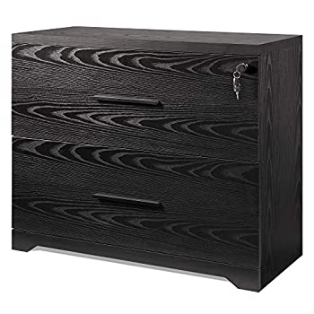 DEVAISE 2-Drawer Wood Lateral File Cabinet with Lock for Home Office Black