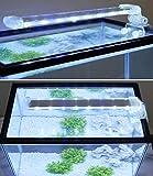 BPS Lámpara de Acuario LED Iluminación Luces para Plantas Luz Blanco y Azul 2 Modelos para Elegir 4W/8W (12W: 400 x 40 mm) BPS-6169