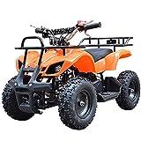 Pocketquad 49ccm Miniquad Quad Kinderquad Quad Pocketbike 49cc Kinderfahrzeug Orange RV- Racing