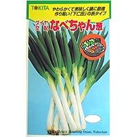 鍋に最適!なべちゃん葱(ダイヤ交配) 数量:約5ml