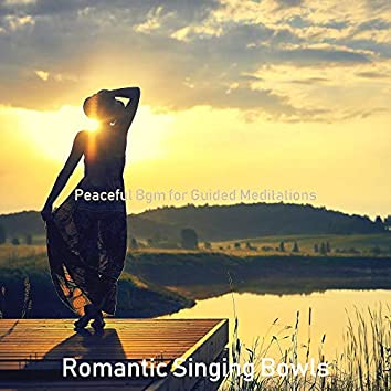 Peaceful Bgm for Guided Meditations