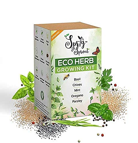 Sprig & Sprout Herb Growing Kit to Grow Your Own Herb Garden - 5 Organic Herb Seeds, 5 Bamboo Pots &...