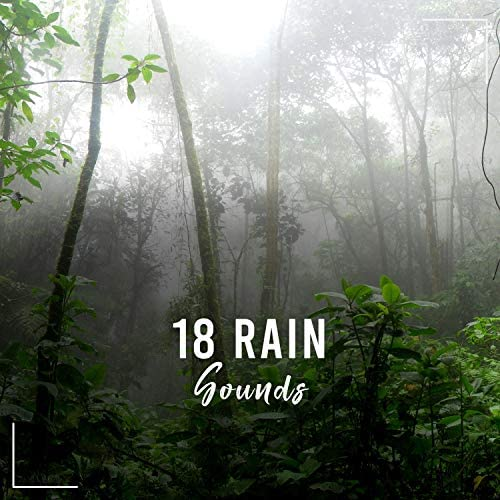 Rain Sounds & Nature Sounds Nature Music