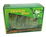 Lucky Reptile Musgo VM-150, seco, para vivarios, 150 g