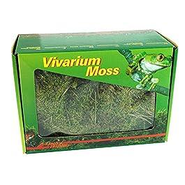 Lucky Reptile VM-150 Dry Vivarium Moss, 150 g