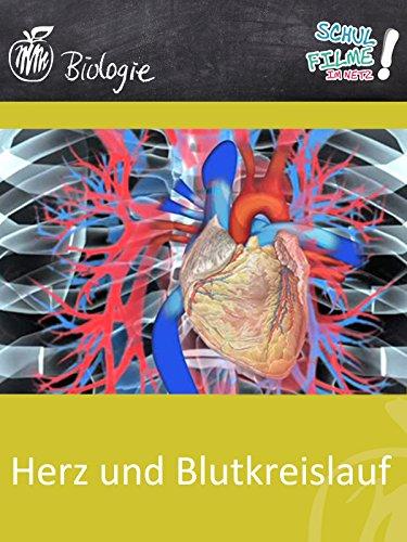 Herz und Blutkreislauf - Schulfilm Biologie