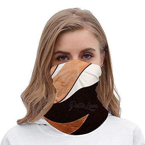 PotteLove Amazing Color Combination Art Unisex Multifunctional Bandana Neck Gaiter Tube Headwear headkerchief, Motorcycle Face Bandana Headband for Women Men Face Scarf