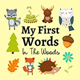 My First Words In The Woods: A Fun Learning Activity Game Book For Kids 1-3 Year Old's (English Edition)