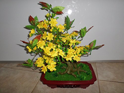 Plastic Artificial Yellow Apricot Flower Bonsai Tree 20 Inch Tall (HOA Mai) Require Assembly of The Branches.