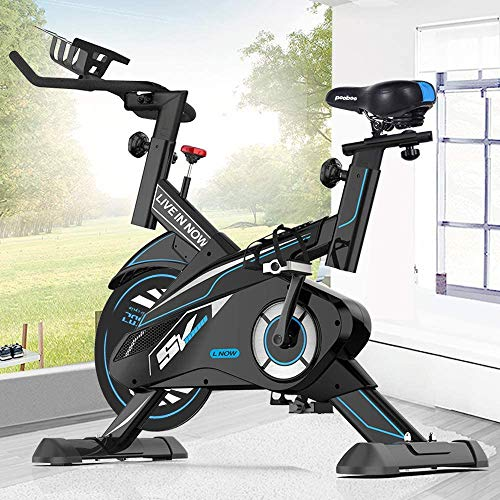L NOW Indoor Exercise Bike Stationary, Belt Drive Indoor Cycling Bike for Home Office Cardio Workout Bike Training Max 350Ibs With Wire to Connect Phone