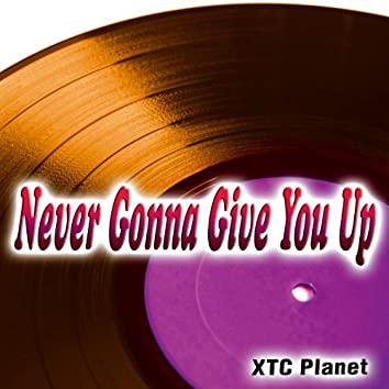 Never Gonna Give You Up - Single