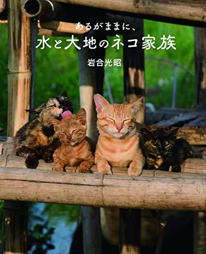 劇場版岩合光昭の世界ネコ歩きあるがままに、水と大地のネコ家族