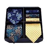 HISDERN Lot 3 Stuck Herren Krawatte Geschenkset, Krawatten & Einstecktuch Set für Herren, Tupfen-Streifen Paisley, Ideal Geschenk für...