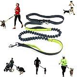 SYCASE - Correa de perro para correr, caminar, senderismo, durable, doble mango, costura reflectante, longitud de 1,8 m, cinturón ajustable para cintura (se adapta a cintura de hasta 107 cm)