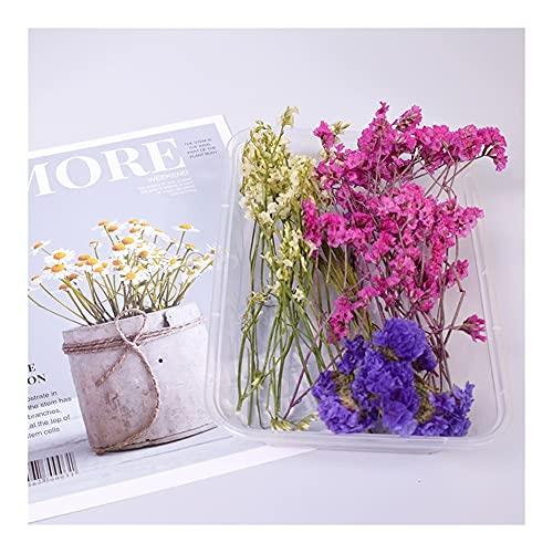 Hochwertiger Blumenstrauß 1 b o x echte getrocknete blume trockene pflanzen für aromatherapie kerze epoxidharz anhänger halskette schmuck make handwerk diy zubehör Schöne Dekoration und langlebig
