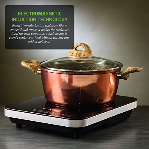 Ovente Electric Ceramic Induction Cooktop
