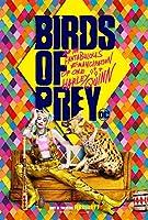 映画 ハーレイ・クインの華麗なる覚醒 Birds of Prey スーサイドスクワッド バットマン JOKER 約90cm×60cm シルク調生地のアートポスター 04 マーゴット・ロビー ユアン・マクレガー
