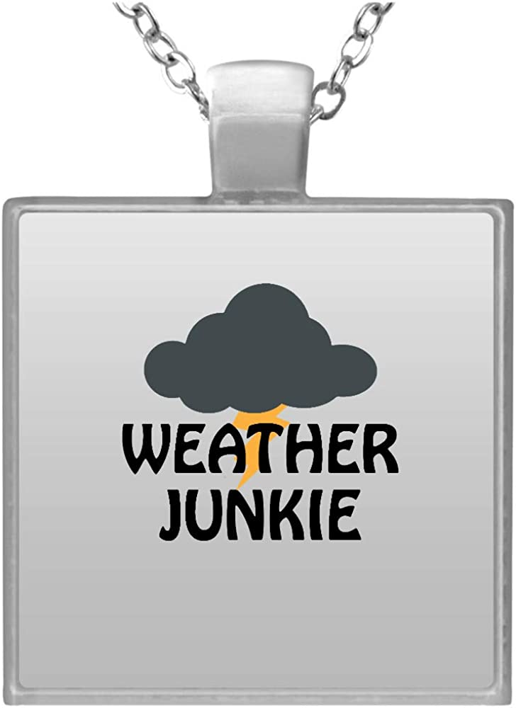 Meteorologist Industry No. 1 Meteorology Ranking TOP8 Weather Junkie Square Necklace