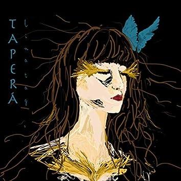 Taperá