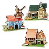 FYY Puzzle 3D en 3D, diseño de café/villa/neerlandés, 3D, autoensamblable, juego de maquetas, regalo y decoración para adultos y niños, 3 unidades