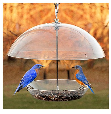 Woodlink Audubon NABBFDR 11-3/4 L Audubon Dome Top...