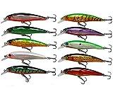 Señuelos de Pesca Duros Minnow Cebos Bass CrankBait 10pcs/Set Señuelos Hundimiento con Ganchos Agudo para Bass Trout Walleye Redfish