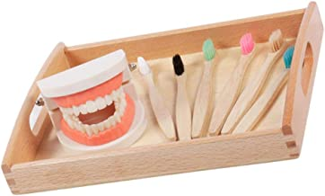 TOYMYTOY Montessori Practical Life Brushing Teeth Model and Cards Montessori Homeschool Learning Preschool Toys for Kids T...