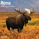 2021 Moose Wall Calendar by Br...