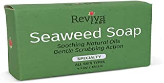 Sponsored Ad - Reviva Original Formula Seaweed Soap 4.5 OZ. (127.5 G), Naturally Clean and Deodorize Your Skin With This F...