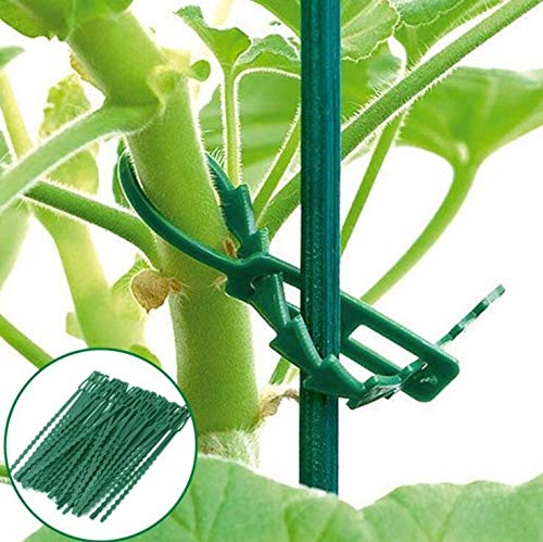 Grüne Garten Krawatte, Bündelung, Gartenwerkzeug, Vine Fixed Tool Strapping Tape
