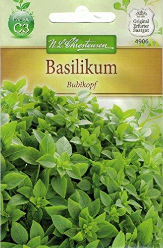 Chrestensen Basilikum 'kleinblättrig' einjährig, hellgrün, kompakt, kleinblättrig