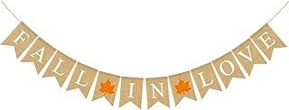 Rainlemon Jute Burlap Fall in Love Banner with Maple Rustic Fall Autumn Wedding Engagement Bridal Shower Garland Decoration