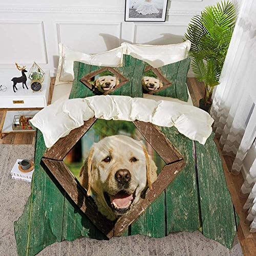 Funny,Curious Dog is Looking from Window in Old Rustic Wooden Fence Cheerful Print Deco,Hypoallergenic Microfibre Duvet Cover Set 260 x 220cm with 2 Pillowcase 50 X 80cm
