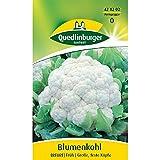 Blumenkohl 'Erfurter Zwerg', 1 Tüte Samen