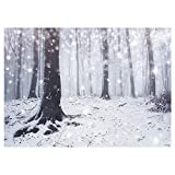 Funnytree 7x5FT Winter Enchanted Forest Photography Backdrop Frozen Snowy White Birch Root Background Bokeh Snowflake Natural Decoration Photo Booth