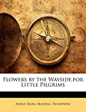 Flowers by the Wayside, for Little Pilgrims