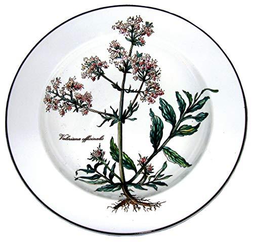 Villeroy & Boch Botanica Suppenteller 21cm 10-2334-2700
