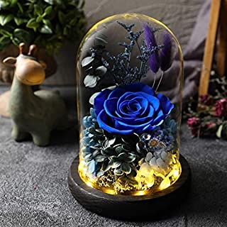 Hecaty Handmade Preserved Rose 丨4.9 inch Forever Rose with LED Light Enchanted 丨Beauty Beast Fresh Rose Lasts in Glass Dome丨Gift for Birthday, Anniversary, Valentine's Day, Christmas