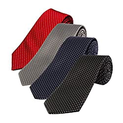 Loviena Glory Mens Polyester Tie (Multicolour) -Set of 4