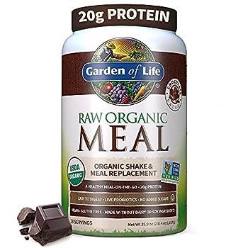 Garden of Life Meal Replacement - Organic Raw Plant Based Protein Powder Chocolate Vegan Gluten-Free 35.9oz  2lb 4oz/1,017g  Powder