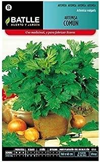 Amazon.es: PlanetaHuerto-es - Semillas / Plantas, semillas y ...