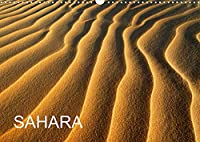SAHARA (Wandkalender 2022 DIN A3 quer): Die Schoenheit der Wueste Sahara (Monatskalender, 14 Seiten )