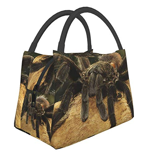 Insulated Lunch Bag Lunch Box Cooler Tote Box Cooler Bag Lunch Container Cool Mexican Red Rump Tarantula Water-Resistant Thermal Leak-Proof Lunchbox for Work Picnic